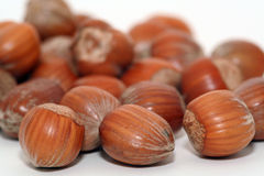 Hazelnuts. A pile of hazelnuts stock photo