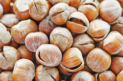 hazelnuts Fotos de Stock Royalty Free