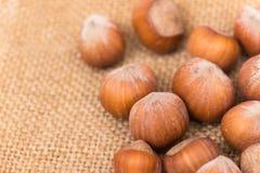hazelnuts foto de stock royalty free