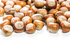 Hazelnuts Obraz Stock