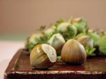 Hazelnuts. The fruit of the hazelnut, in a leafy involucre (husk Stock Photography