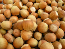 Hazelnuts. Horizontal background of a bulk of brown hazelnuts Stock Images