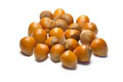hazelnuts Imagens de Stock