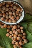 Hazelnuts Zdjęcie Stock