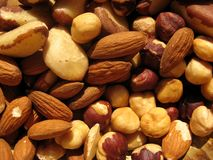 Hazelnuts, almonds and Brazilian nuts Stock Image