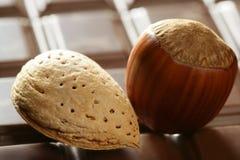 Hazelnuts, almonds and chocolate Royalty Free Stock Photo