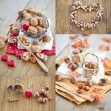 Hazelnuts arachidy orzech włoski i pistacje, Fotografia Stock