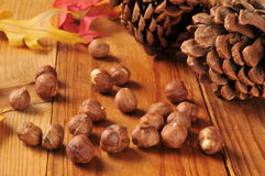 Hazelnuts on an autumn setting Stock Photos