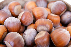 Hazelnuts background. Royalty Free Stock Image
