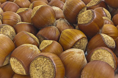 Hazelnuts. Background. Royalty Free Stock Images