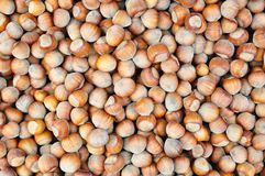 Hazelnuts background Royalty Free Stock Photos