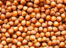 Hazelnuts background Stock Image
