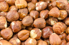 Hazelnuts background Royalty Free Stock Image