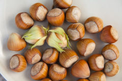Hazelnuts, background Stock Photos