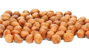 Hazelnuts background isolated on white background. Royalty Free Stock Image
