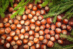 Hazelnuts background. Nuts on wooden background with Christmas tree Royalty Free Stock Photos