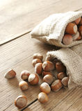 Hazelnuts and bag Royalty Free Stock Image
