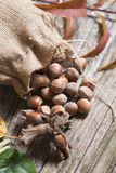 Hazelnuts in bag Royalty Free Stock Images