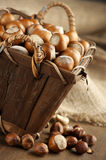 Hazelnuts in basket Royalty Free Stock Images