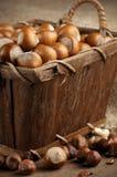 Hazelnuts in basket Royalty Free Stock Photos