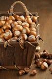 Hazelnuts in basket Royalty Free Stock Photo