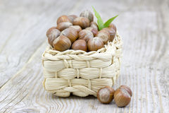 Hazelnuts in a basket Stock Image