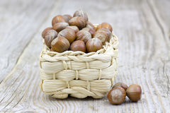 Hazelnuts in a basket Royalty Free Stock Image