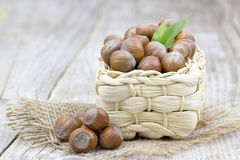 Hazelnuts in a basket Stock Photography