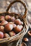 Hazelnuts in a basket Stock Photos