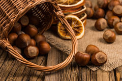 Hazelnuts in a basket on old wooden table. royalty free stock photo
