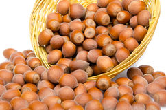 Hazelnuts in a basket Royalty Free Stock Images