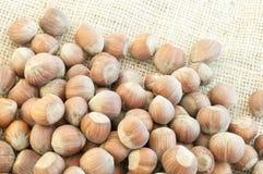Hazelnuts. Beautiful macro of  hazelnuts on jute background Royalty Free Stock Photography