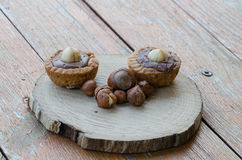 Hazelnuts with biscuits. Hazelnuts with some chocolate biscuits stock images
