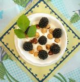 Hazelnuts and blackberries with cream Stock Photos