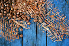Hazelnuts on blue rustic table with decoration on it Royalty Free Stock Photos