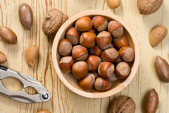 Hazelnuts in bowl Stock Image