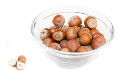 Hazelnuts on bowl Royalty Free Stock Photos