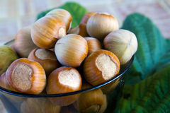 Hazelnuts in a brown glass bowl Stock Image