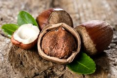 Hazelnuts on brown wooden background close up. stock photos