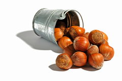 Hazelnuts and bucket-1 Stock Image