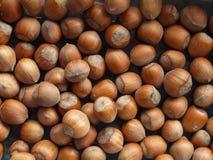 Hazelnuts Royalty Free Stock Photo
