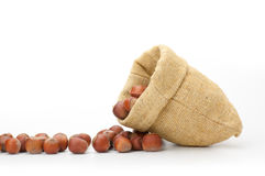 Hazelnuts in a burlap bag on white background Stock Photo