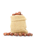 Hazelnuts in a burlap bag on white background Royalty Free Stock Photo