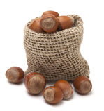 Hazelnuts in a burlap sack Stock Images