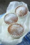 Hazelnuts Cake. Hazelnut cup cakes dusted with powdered sugar Royalty Free Stock Images