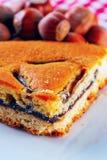 Hazelnuts cake Stock Image