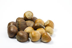 Hazelnuts and chestnuts. Some hazelnuts and chestnuts on white stock photos