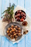 Hazelnuts and chestnuts Stock Images
