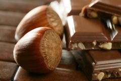 Hazelnuts and chocolate in brown enviroment Stock Images
