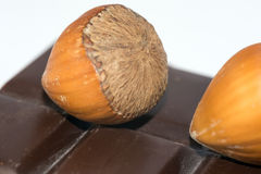 Hazelnuts and chocolate Stock Images